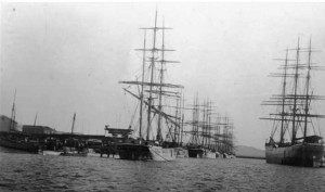 Three-masted sailing ships waiting to load wheat, 1920.